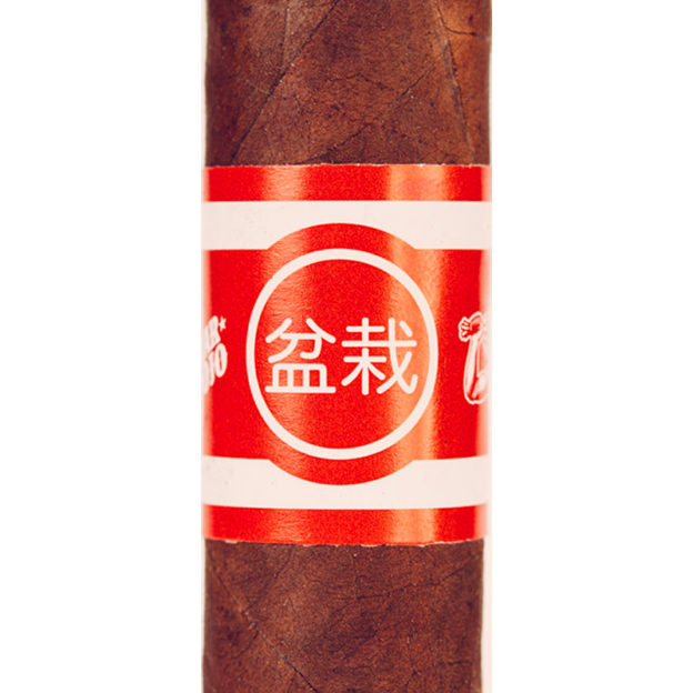 Bonsai Cigar